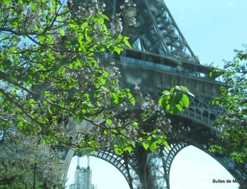 Morceaux choisis de Paris