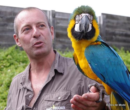 Vincent et Julie, le perroquet vedette du Parc des Oiseaux