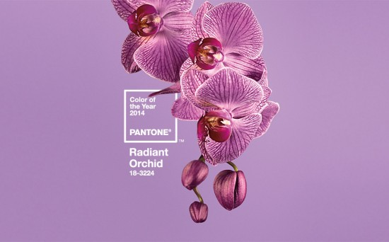 Radiant Orchid Pantone 2014