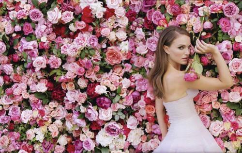 Miss Dior Natalie Portman Mur de roses