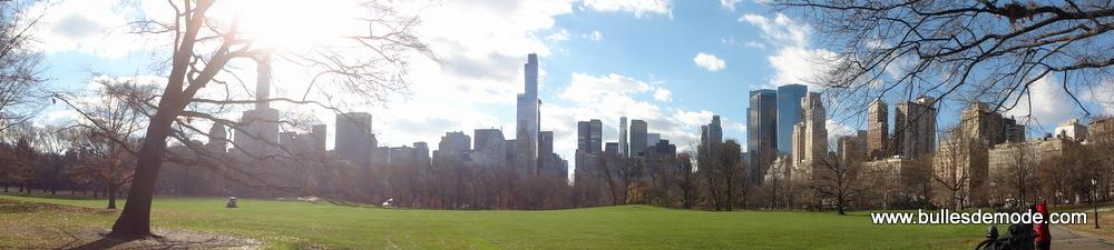 New York Central Park Noël