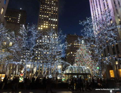 Visiter New-York à Noël – Fausse Bonne idée ?