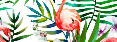 tropical-flamant-rose-1-1000x360