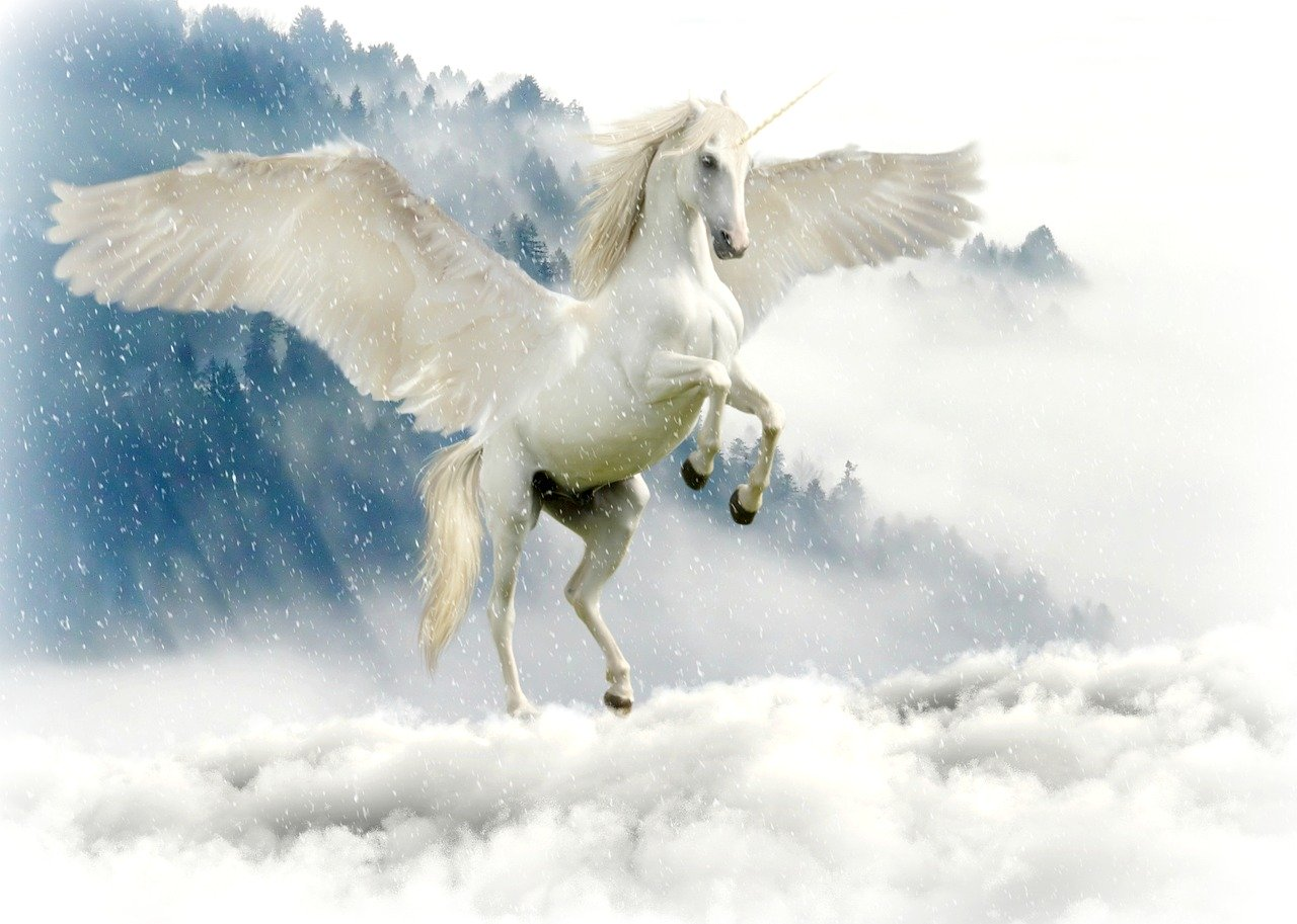 Licorne - ambition - motivation - objectif